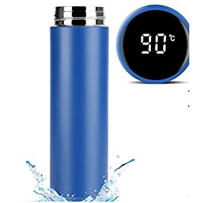 Double Wall Thermometer Bottle 500ml- Blue