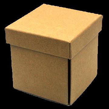 Eco Friendly Box- Brown