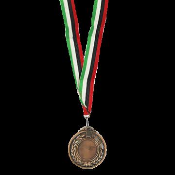 Medal- Bronze